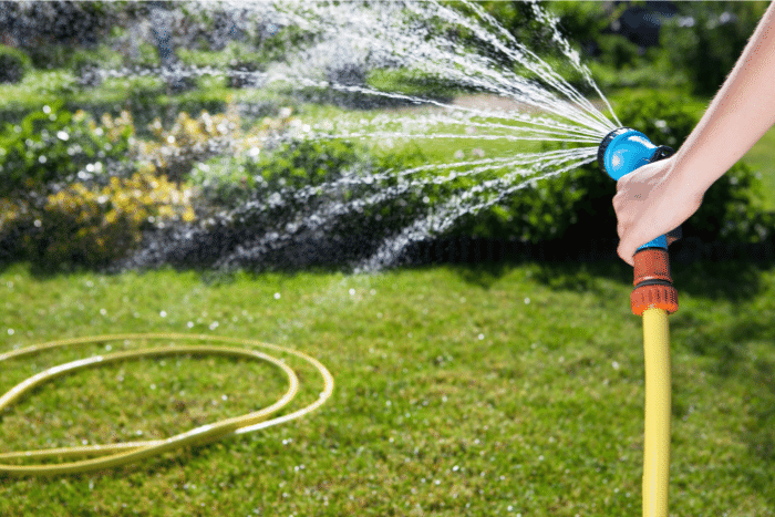 Image of a hand watering the lawn